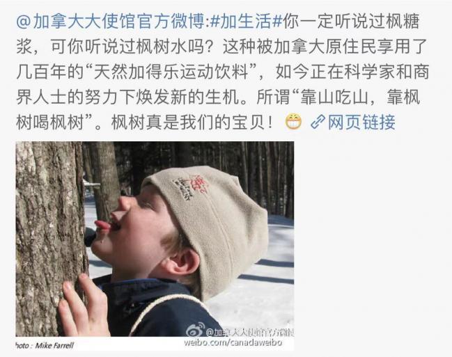 WeChat Image_20191112133210.jpg