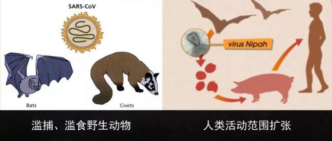 WeChat Image_20200121120122.jpg